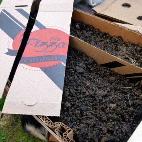 Créer un bac à semis avec une cagette et du carton