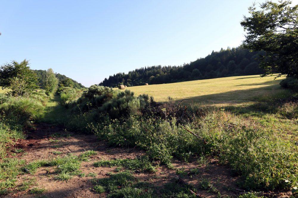 Petit vallon de Fontolière
