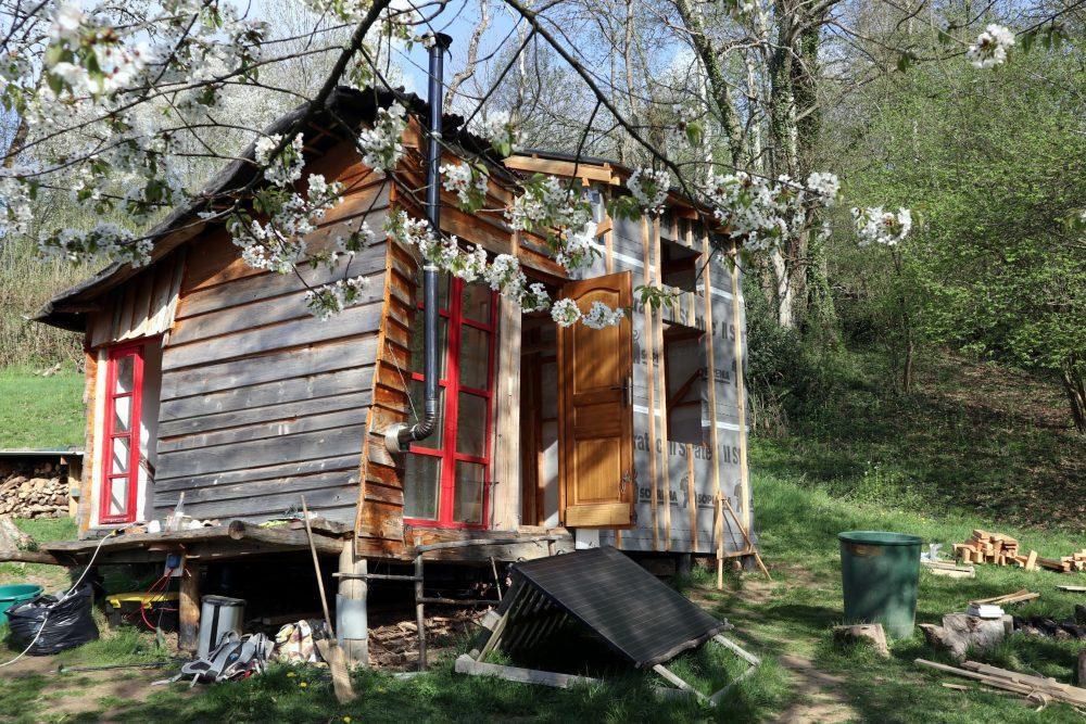 La cabane derrière le merisier