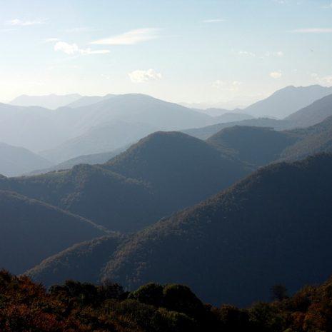 Trail au Castel Segui