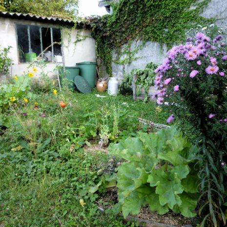Petite rétrospective du jardin : 2014 ou le potager en butte sandwich